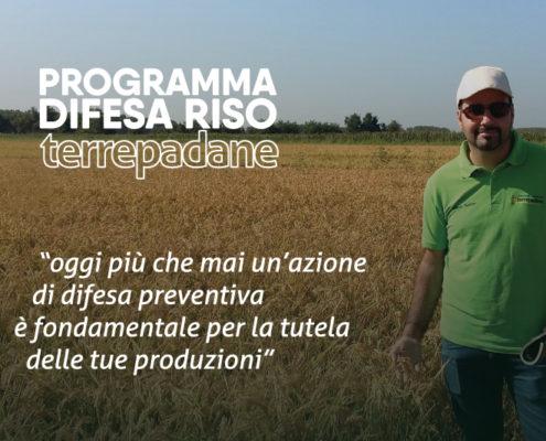 programma difesa riso terrepadane