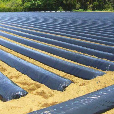 Materie plastiche terrepadane for Consorzio agrario cremona macchine agricole usate